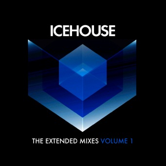 The Extended Mixes Vol 1 - 2013